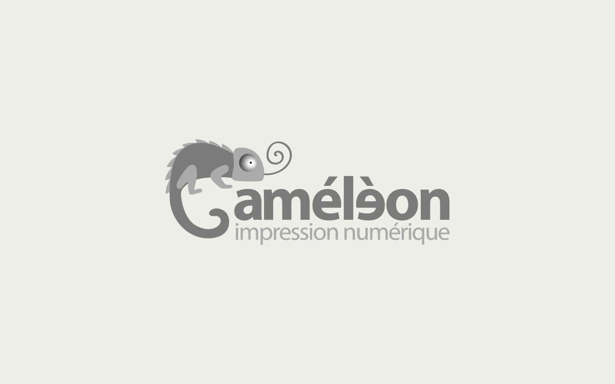 Diseño logotipo para imprenta.